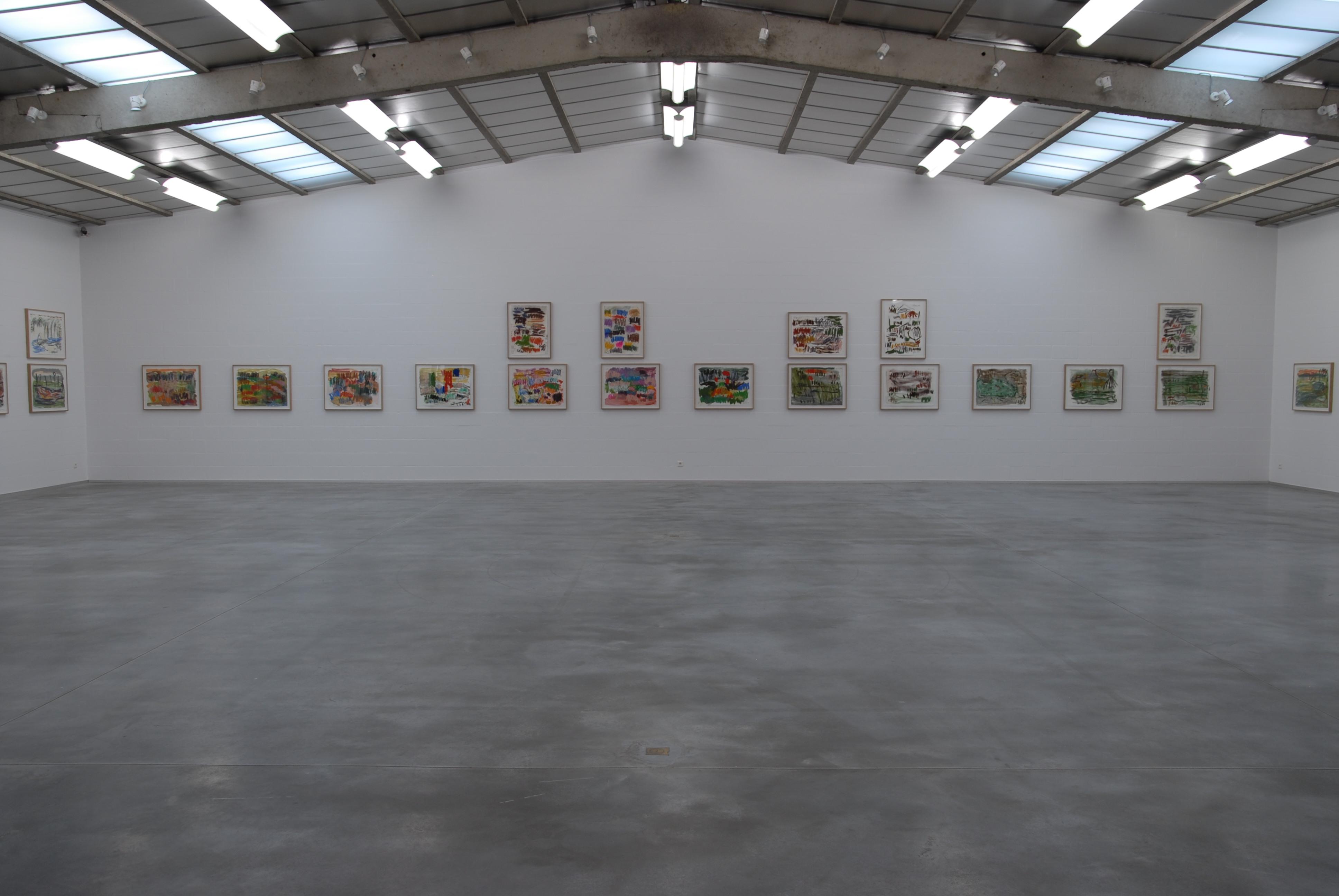 Günther Förg, The Double Dream of Spring, 2013 - zicht op de tentoonstelling